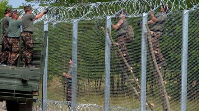 Le mur à la frontière entre la Hongrie et la Serbie