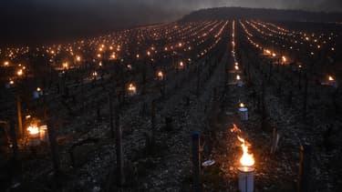A côté d'Auxerre, des vignerons protègent leurs vignes du gel à l'aide de bougies le 21 avril 2017