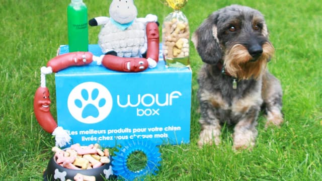 La Woufbox, une des innovations destinées à l'alimentation du meilleur ami de l'homme.