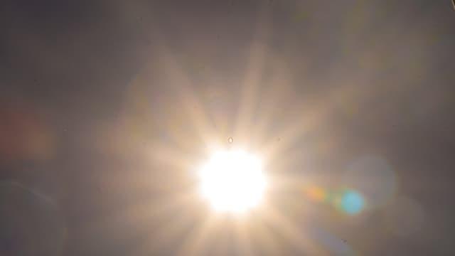 De fortes chaleurs sont attendues cette semaine dans l'Hexagone. Photo d'illustration.