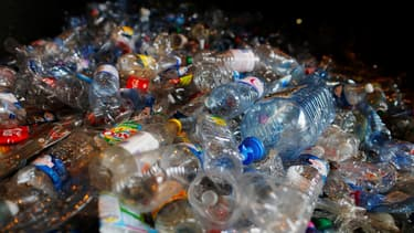 Des bouteilles en plastique dans une usine de recyclage.