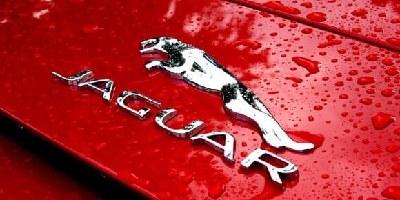 Le F-Type est digne du fameux emblème Jaguar.
