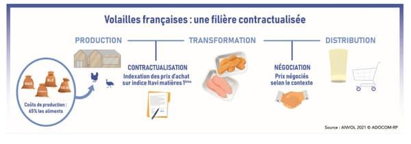 La volaille française adopte un schéma contractuel