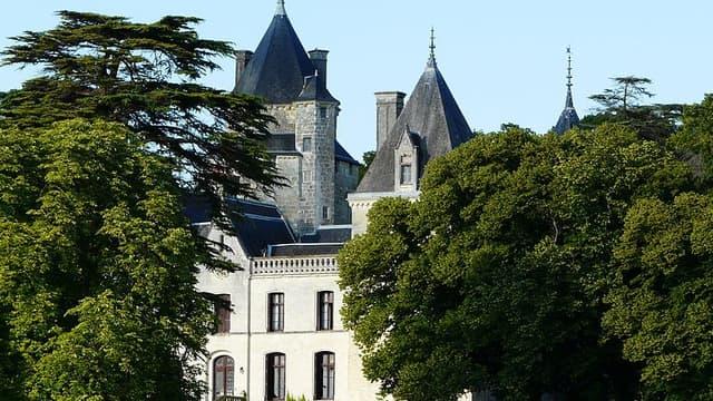 Le château de Ternay, dans la Vienne, est sur la liste des 101 sites en péril, dévoilés par la mission patrimoine.