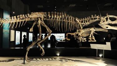Un dinosaure Cryolophosaurus au musée national de Tokyo en 2009.