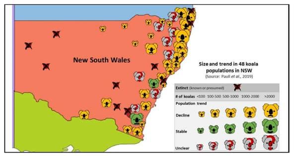 Carte montrant l'emplacement et le nombre approximatif de 48 populations de koalas en Nouvelle-Galles du Sud