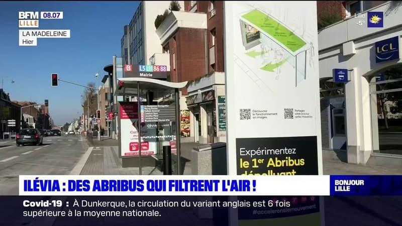 Lille: un abribus dépolluant expérimenté sur le réseau Ilévia