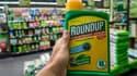 Une bouteille de RoundUp, produit de Monsanto contenant du glyphosate, un herbicide au coeur d'une controverse en Europe, le 15 juin 2015 dans une jardinerie de Lille.