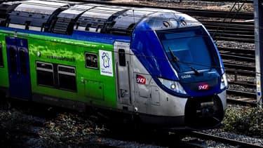 Après la grève qui a coûté un milliard, des surcoûts liés par exemple à la recherche d'un substitut pour le glyphosate pour désherber les voies et surtout, avec l'épidémie, l'effondrement du nombre de passagers et des mesures sanitaires coûteuses, les pertes pour la SNCF, sont évaluées à un peu plus de 4 milliards d'euros.