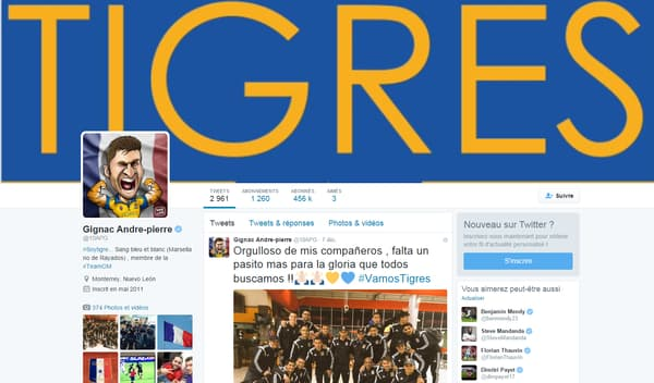 Page Twitter d'André-Pierre Gignac