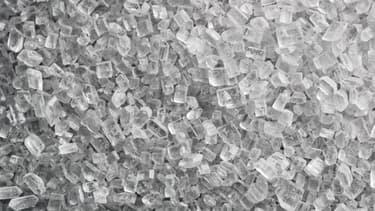 Le marché du sucre de betterave, dont la France est le premier producteur européen, et un importateur important