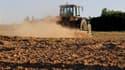 Exploitation agricole près de Blécourt, dans le nord de la France. Paris a demandé à l'Union européenne de venir en aide aux agriculteurs français touchés par une sécheresse grandissante, a annoncé le ministre de l'Agriculture Bruno Le Maire. /Photo prise