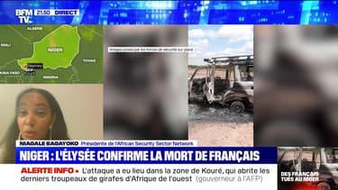 Niger: des Français et leurs guides tués par des hommes armés (2/5) - 09/08