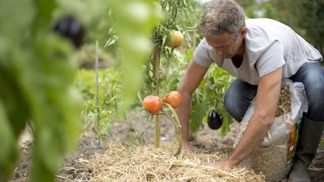 """Botanic compte bien récupérer plus de 5 tonnes de pesticides lors de sa nouvelle campagne """"Pulvérisons les pesticides"""""""