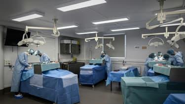 Des étudiants en médecine lors d'un cours de chirurgie sur un corps donné à la science, le 13 juin 2020 à l'Ecole de Chirurgie de l'AP-HP à Paris (Photo d'illustration).