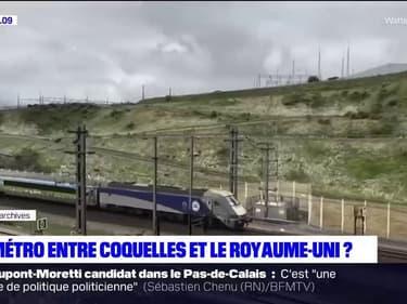 Natacha Bouchart, la maire (LR) de Calais, évoque l'idée de créer un métro entre Coquelles et le Royaume-Uni