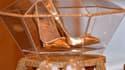 Ces escarpins sont les plus chers de l'histoire de la chaussure.