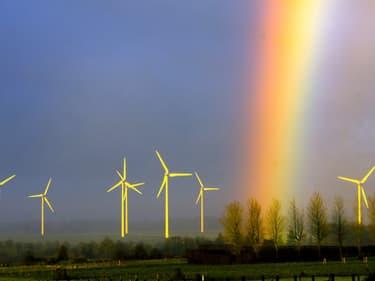 Un champ d'éoliennes à Lisbourg, dans le Pas-de-Calais.