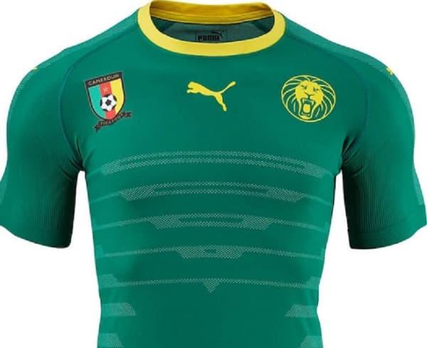 Cameroun domicile 2016
