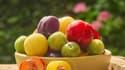 Une trentaine de variétés de prunes sont produites en France.