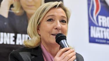 Marine Le Pen le 28 janvier 2014 à Poitiers, lors d'une conférence de presse. L'image de la présidente du FN recueille toujours plus d'opinions favorables.