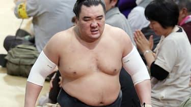 Le champion de sumo Harumafuji le 13 novembre 2017.