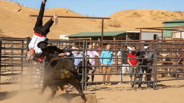 """Johnny Knoxville et un taureau dans """"Jackass 4"""""""