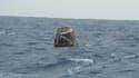 """La capsule """"Dragon"""", premier vaisseau privé à s'être arrimé à la Station Spatiale internationale (ISS), est retombée dans l'océan Pacifique jeudi, au large des côtes de Basse-Californie (Mexique), au terme d'une mission de neuf jours dans l'espace. /Photo"""