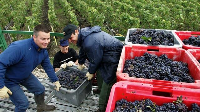 Les Français consomment moins de vin qu'avant.