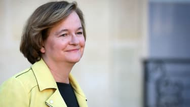 Nathalie Loiseau, ministre auprès du ministre de l'Europe et des Affaires étrangères à l'Elysée le 14 novembre 2018.