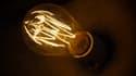 Ségolène Royal souhaite rendre populaire sa loi sur la transition énergétique en offrant ampoules et radiateurs. (image d'illustration)