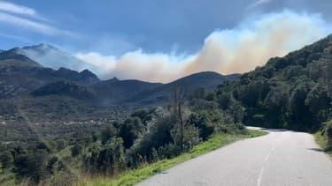 Plus de 1300 hectares sont partis en fumée en Haute-Corse dans la nuit de samedi à dimanche
