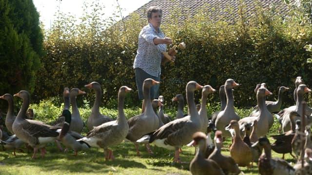Dominique Douthe prenant soin de ses canards et ses oies à Souston, dans les Landes, le 2 septembre 2019