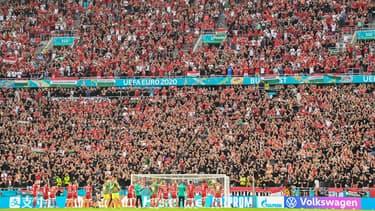 Les supporters de la Hongrie, à Budapest le 15 juin 2021