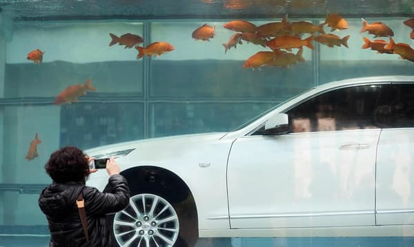 La CT6 est exclusivement pensée pour le marché chinois, ou Cadillac accuse un grand retard face à ses concurrents, allemands notamment.