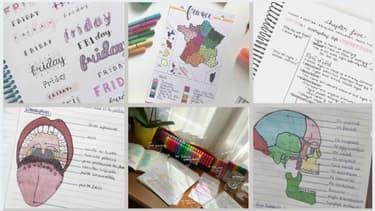 Instagram, Tiktok et Pinterest regorgent de comptes d'étudiants, de lycéens et de collégiens qui partagent leurs fiches de révisions.