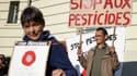 Une manifestation anti-pesticides  (photo d'illustration)