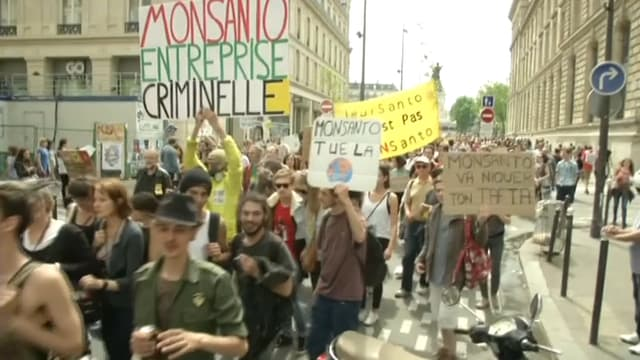"""""""Monsanto, entreprise criminelle"""", les manifestants n'ont pas de mots assez durs contre l'entreprise américaine."""