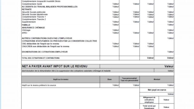 modèle officiel de bulletin de paie