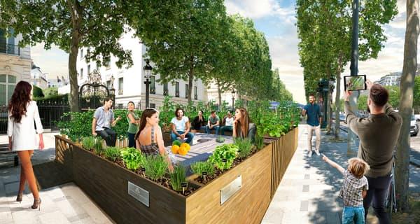 Des terrasses végétalisées vont être installées cet été sur les Champs-Élysées