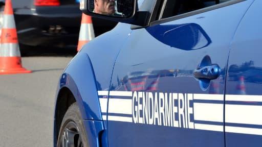 Des ossements de deux bébés ont été retrouvés par des gendarmes au sud de Mont-de-Marsan, dans les Landes.