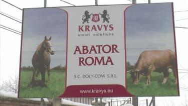 L'affaire de la viande de cheval secoue l'industrie agroalimenaire en Europe.