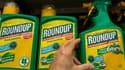 Ce désherbant contenant du glyphosate commercialisé par Monsanto