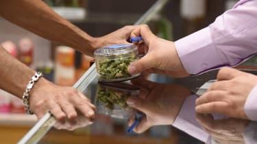 Le cannabis est autorisé pour un usage médical et récréatif dans 9 Etats américains. (Photo d'illustration)