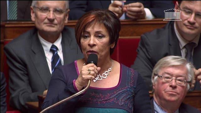 La députée UMP Marie-Christine Dalloz à l'Assemblée nationale le 19 novembre 2013.