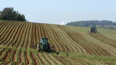 La FNSEA et les Jeunes Agriculteurs souhaitent que le décret Montebourg soit étendu aux terres agricoles.
