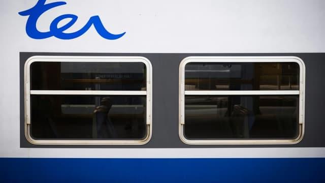 La circulation des trains perturbée lundi entre Lyon et Saint-Etienne, la ligne TER la plus fréquentée de France, en raison de la chute d'un rocher sur les voies.