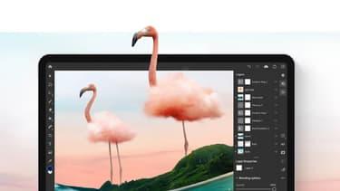 Adobe Creative Cloud passe à 47,99 euros/mois au lieu de 59,99 euros/mois pour un abonnement annuel.