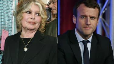 Brigitte Bardot a été reçue à l'Elysée par Emmanuel Macron, le 24 juillet 2018