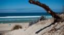 Une plage de Biscarosse dans les Landes (Photo d'illustration).